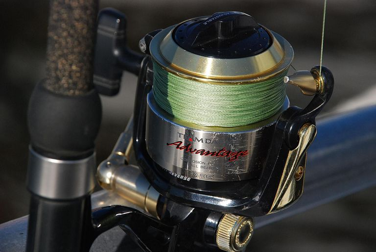 best fishing line for trout
