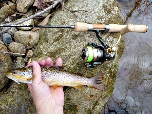 Best Trout Spinning Reel For 2018 Top Rated Trout Reels