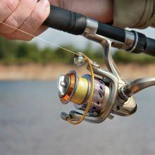 Best Steelhead Spinning Reel